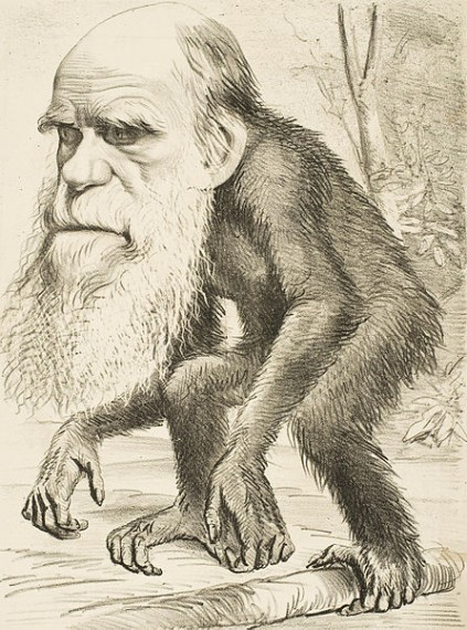 Caricature of Darwin as the offspring of an ape (source)