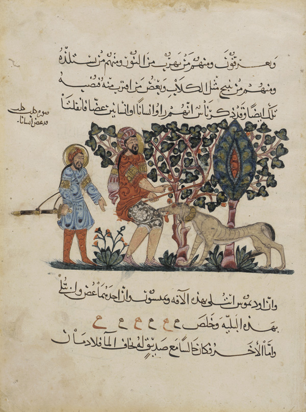 "A mad dog bites a man. Arabic painting from a translation of ""De material medica"" of Dioscorides in Arabic (1224 AD) (source)"